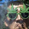 米コロラド州、大麻合法化以後犯罪率が10%減少
