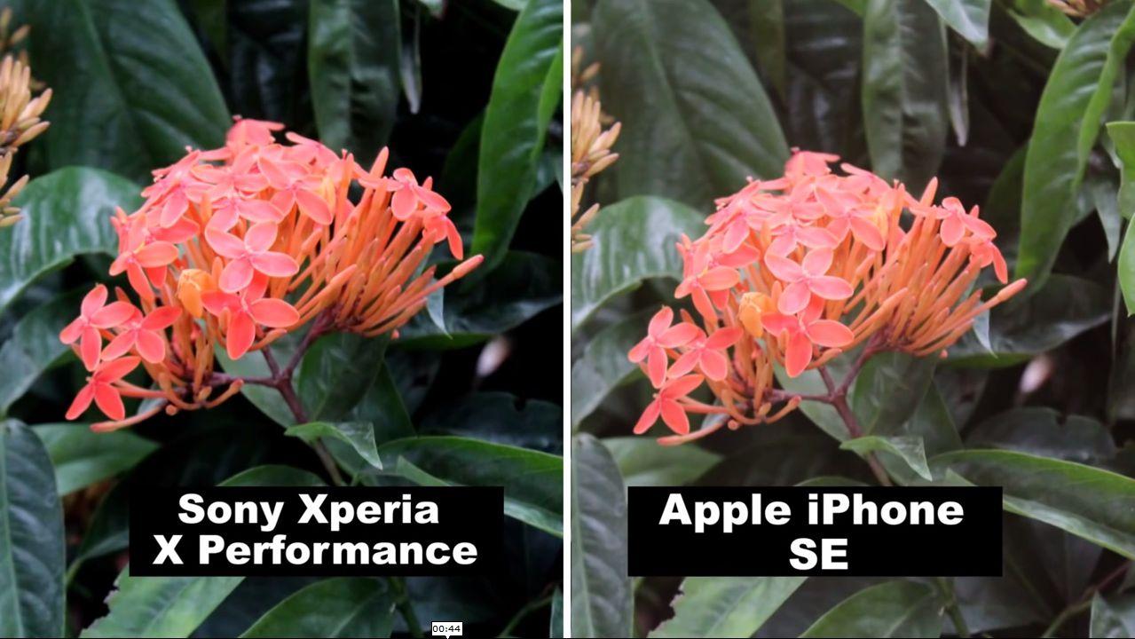 XPERIAXP_iPhoneSE5
