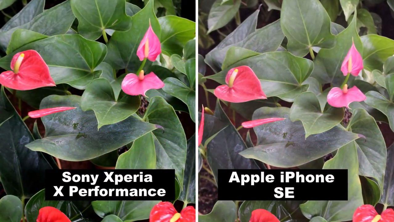 XPERIAXP_iPhoneSE6