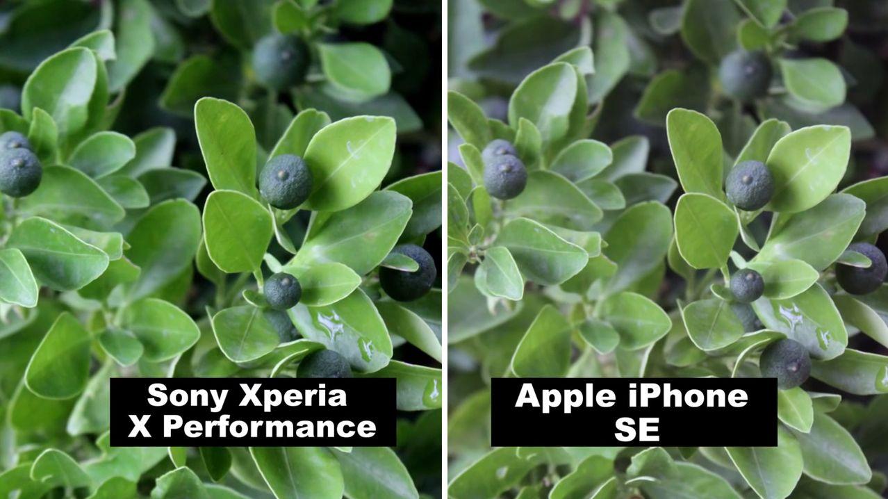 XPERIAXP_iPhoneSE8