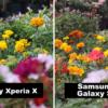 Xperia XとGalaxy S7で同じものを撮影した比較写真8枚