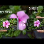 ZenFone3 DeluxeとGalaxy S7 edgeの撮影画質を比較6種類